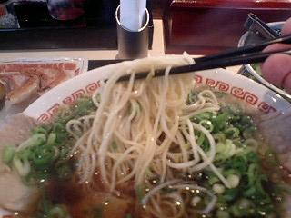 らーめん食堂よってこや 寝屋川製麺所 濃厚醤油ラーメン 麺