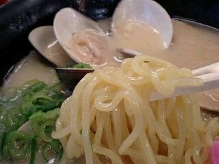 大山田PAスナックコーナー はまぐりラーメン(とんこつ) 麺