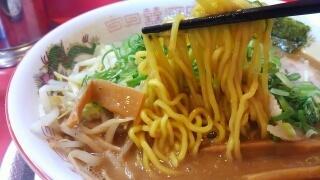 ラーメンたんろん たんろん味噌ラーメン(大盛) 麺