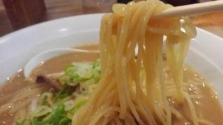 熊五郎 味噌らーめん(大盛) 麺
