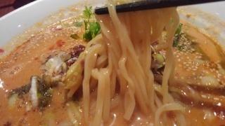 紅虎軒 青山椒担々麺 麺