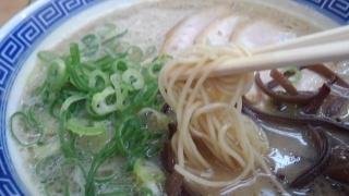 らーめん虎と龍 白龍とんこつ 麺