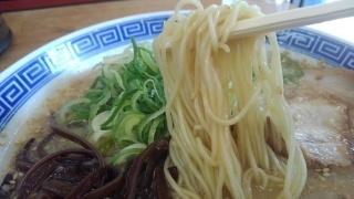 らーめん虎と龍 白虎とんこつ 麺
