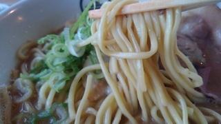 麺屋 縁 鶏白湯ラーメン(醤油) 麺